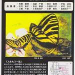 4th-kawana-art-show
